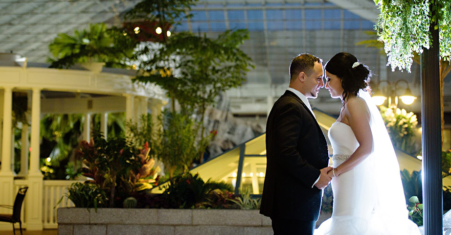 Wedding Couple Holding Hands In The Glass Ceiling Atrium